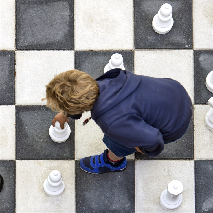 Kid_with_Chess_setcolour_736x736.jpg