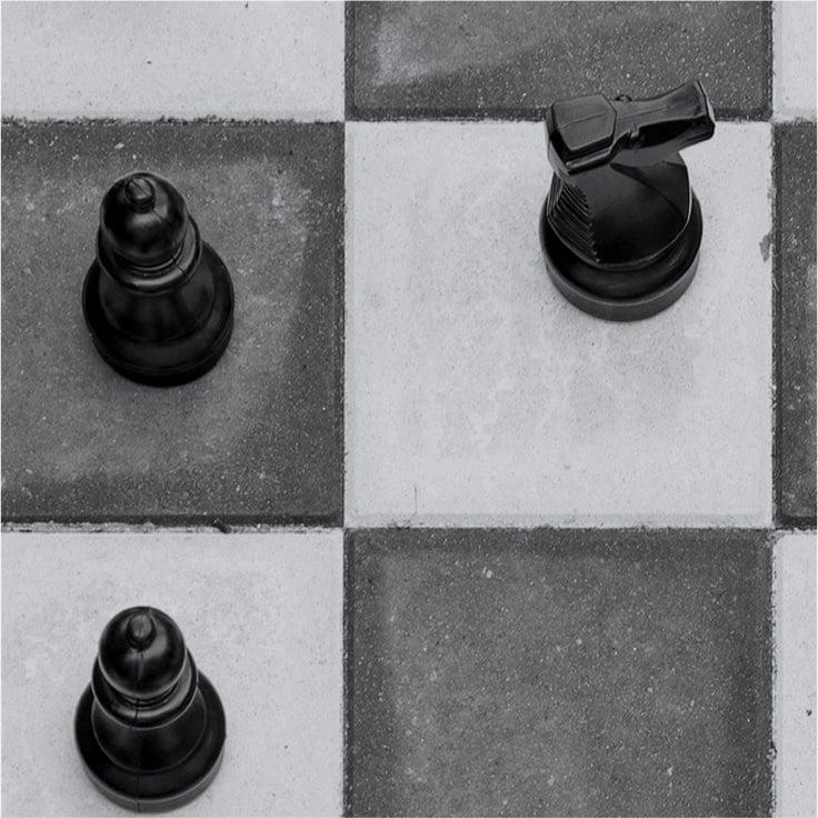 chess_grey2.jpg